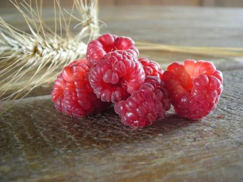 summer raspberries 010